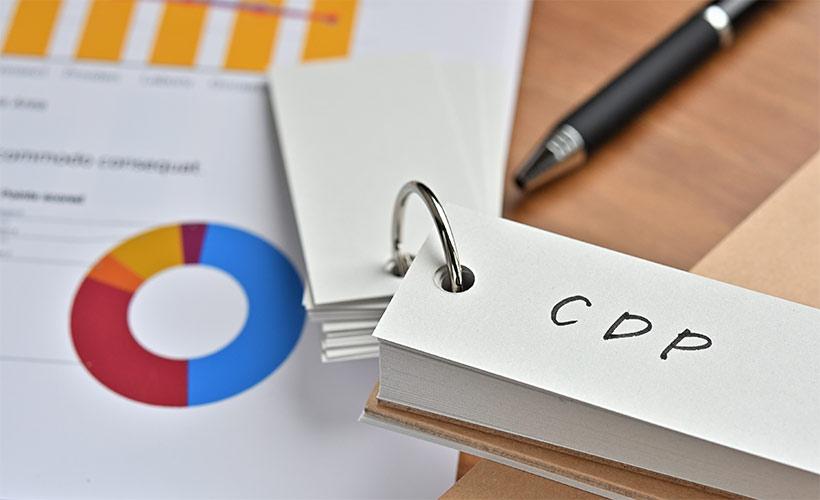 Vorbereitungen zur Einführung einer Customer Data Platform (CDP), Key-Work